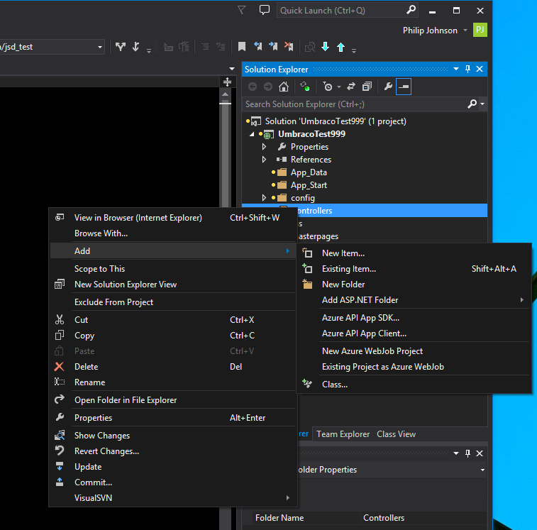 Image showing missing scaffolding in VS2013