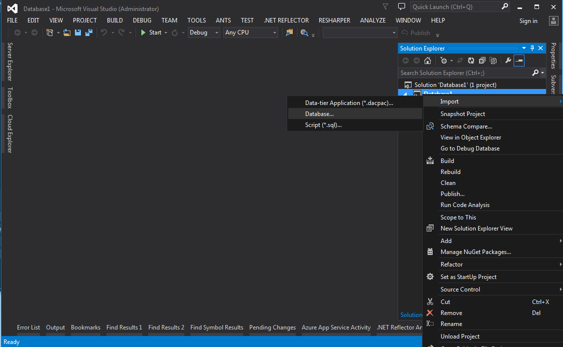 Screen print of Empty SSDT Project in Visual Studio